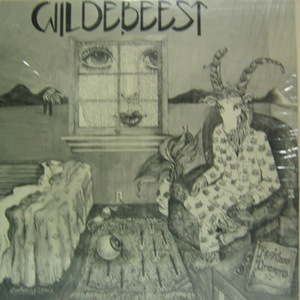 WILDEBEEST - Reckless Dreams  (33rpm 10인지 EP)